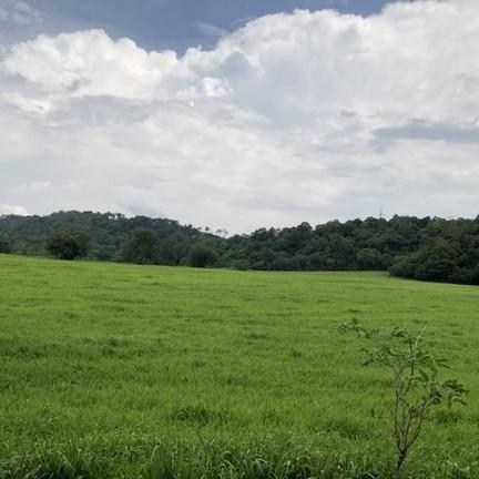 ฟาร์มโคนมไทย-เดนมาร์ค