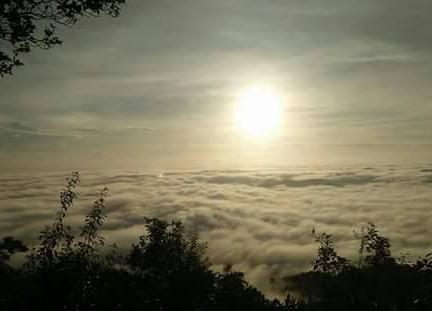 วังผาเมฆ