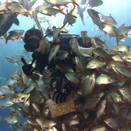 ขอบคุณภาพจาก พิพิธภัณฑ์สัตว์น้ำจังหวัดหนองคาย