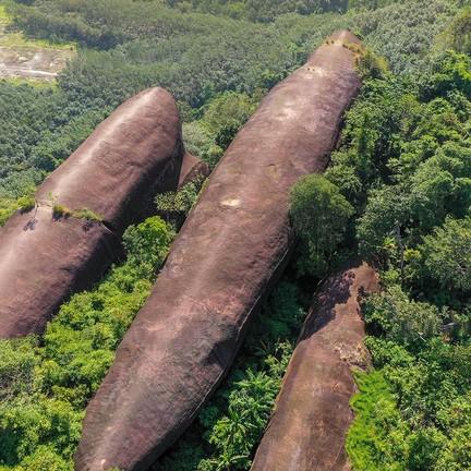 หินสามวาฬ ภูสิงห์ บึงกาฬ