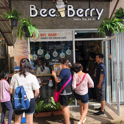 Bee Berry Honey Ice cream