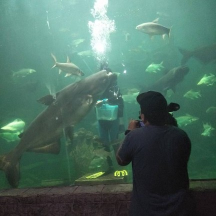 ศูนย์แสดงพันธุ์สัตว์น้ำศรีสะเกษอควาเรียม