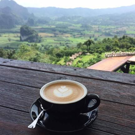 ขอขอบคุณรูปภาพจาก FB บ้านทะเลหมอก ณ ภูลังกา อ.ปง จ.พะเยา