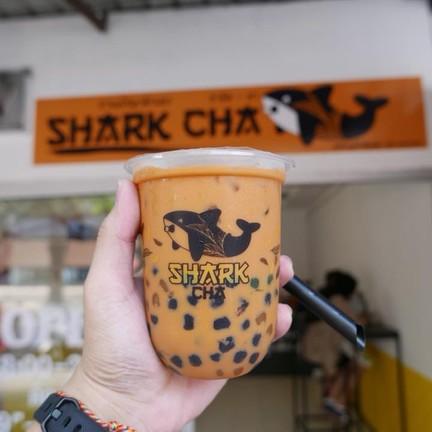 Shark Cha