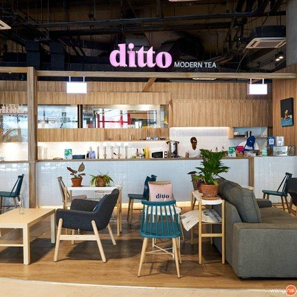 Ditto Modern Tea  101 The Third Place