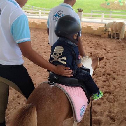 Pipo Pony