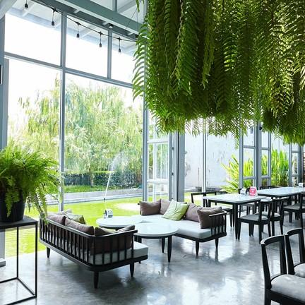 TRI Cafe' & Restaurant