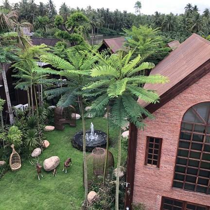 ดำเนินพวา รีสอร์ทบ้านต้นไม้