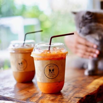 Princess Cat Cafe @ Chalong Bay Phuket อ่าวฉลอง ภูเก็ต