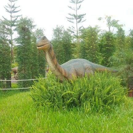 Amazing Dinosaur