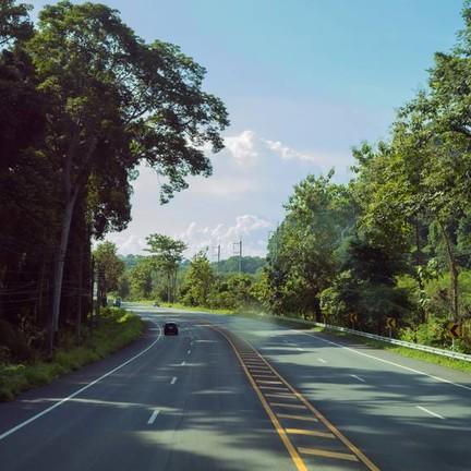 ป่าโอโซน