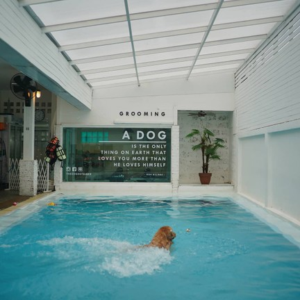 ขอขอบคุณรูปภาพจาก FB The Dog Hotel BKK