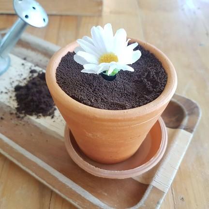 ☆☆☆☆75.- ดอกไม้กินไม่ได้ ตัวเค้กเป็นช็อคฉ่ำดี ไม่หวานมาก
