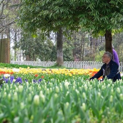 Wuhan Botanic Garden