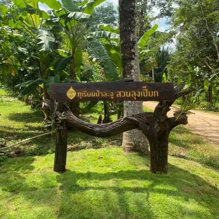 ขอบคุณภาพจากเพจ Facebook : ทุเรียนป่าละอู - สวนลุงเปี๊ยก