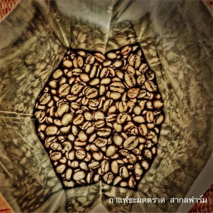 กาแฟชะมด สากลฟาร์ม