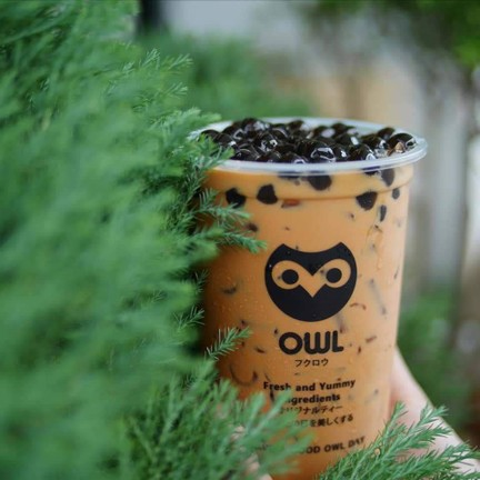 OWL CHA เมืองภูเก็ต