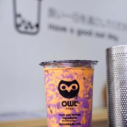 Owl Cha ชัยภูมิ