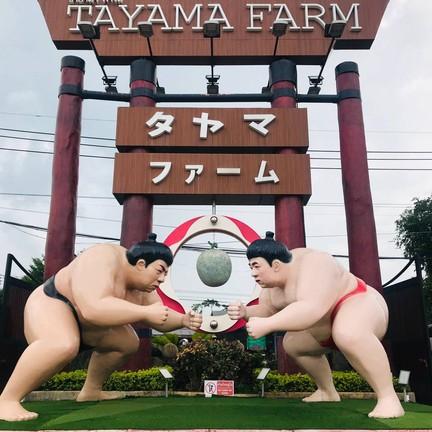 Tayama farm khaoyai