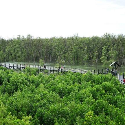 ศูนย์ศึกษาธรรมชาติและอนุรักษ์ป่าชายเลนเพื่อการท่องเที่ยวเชิงนิเวศ