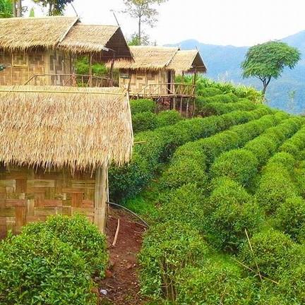 โครงการสถานีพัฒนาเกษตรที่สูง บ้านสะจุก-สะเกี้ยง
