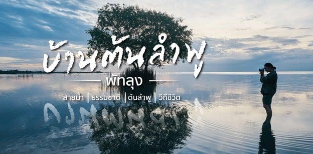 สายน้ำ / ธรรมชาติ / ต้นลำพู / วิถีชีวิต บ้านต้นลำพู พัทลุง