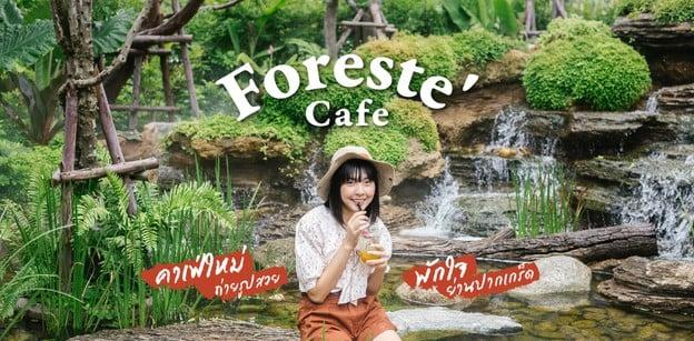 เช็กอินที่เที่ยวนนทบุรีแห่งใหม่ พักใจในคาเฟ่ป่าดิบชื้นย่านปากเกร็ด
