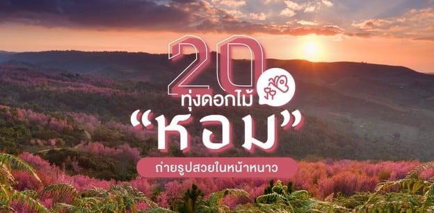 20 จุดถ่ายรูปดอกไม้หน้าหนาว สวยสะพรั่งน่าเซลฟี!