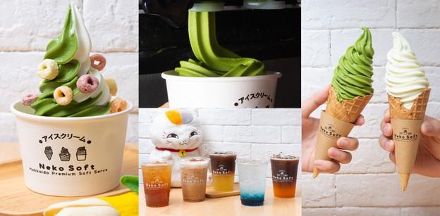 """""""Neko Soft"""" ร้านไอศกรีมขอนแก่น กับซอฟต์เสิร์ฟสไตล์ญี่ปุ่นแท้ ราคาสบาย"""