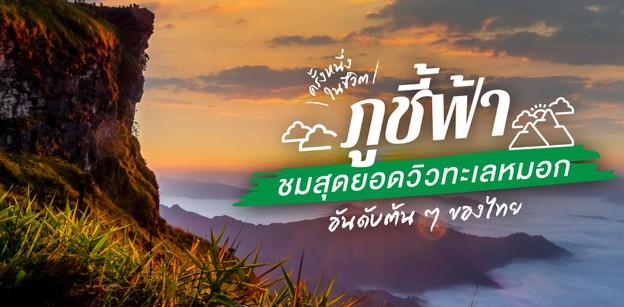 """""""ภูชี้ฟ้า"""" ครั้งหนึ่งในชีวิต ชมสุดยอดวิวทะเลหมอกอันดับต้น ๆ ของไทย"""