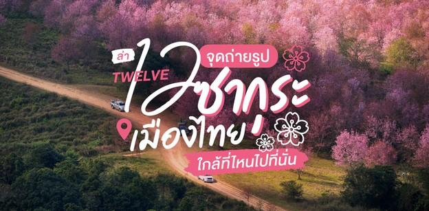 12 จุดชมดอกนางพญาเสือโคร่ง ซากุระเมืองไทย ไม่ต้องไปไกลถึงญี่ปุ่น
