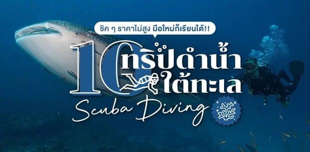 ปัก! 10 ทริปดำน้ำใต้ทะเล Scuba Diving ชิค ๆ ราคาไม่สูง มือใหม่เรียนได้