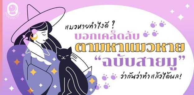 แมวหายทำไงดี?  บอกเคล็ดลับตามหาแมวหายฉบับสายมู เชื่อว่าทำตามแล้วได้ผล!