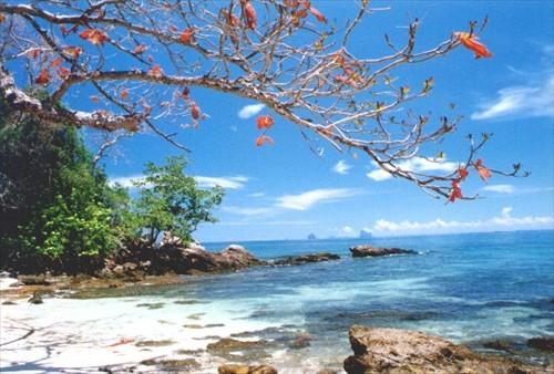 เกาะลิดี