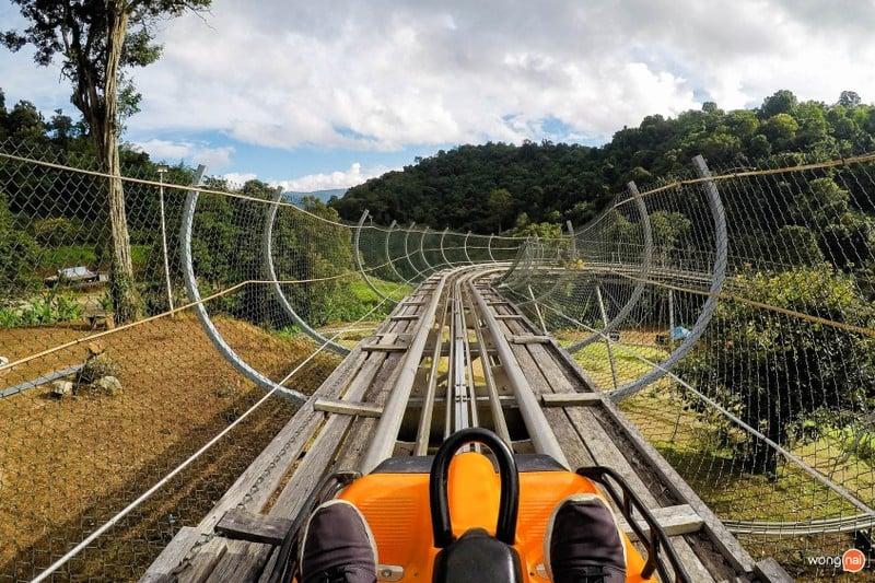 Pongyang Jungle Coaster & Zipline ม่อนแจ่ม แม่ริม เชียงใหม่