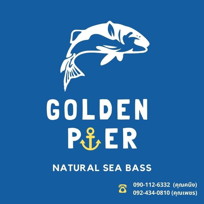 Brand/Logo