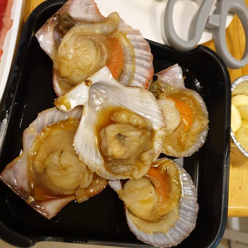 หอยเชลล์