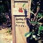 ก๋วยเตี๋ยวเรือ นายหงอก บ้านสวน (Kuaitiao Ruea Nai Ngok Ban Suan) รามคำแหง 21