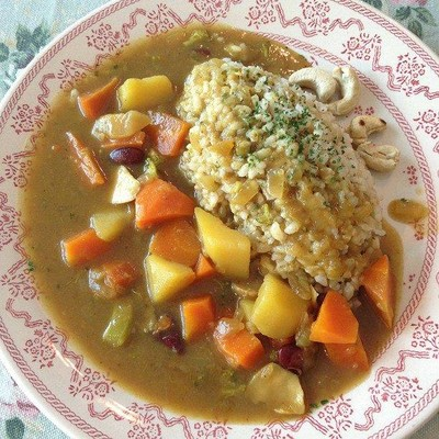 Organic vegan japanese curry