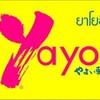 yayoi @ Sunee Tower Ubon