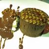 Chocolate Leigeois