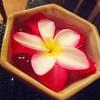 ดอกไม้น่ารักๆ บนโต๊ะทานข้าว