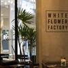 ครัวดอกไม้ขาว สยามสแควร์ วัน