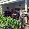 Chivit Thamma Da Coffee House