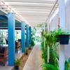 บรรยากาศ บ้านใกล้วัง หัวหิน Baan Khrai Wang 露天海邊甜點餐廳
